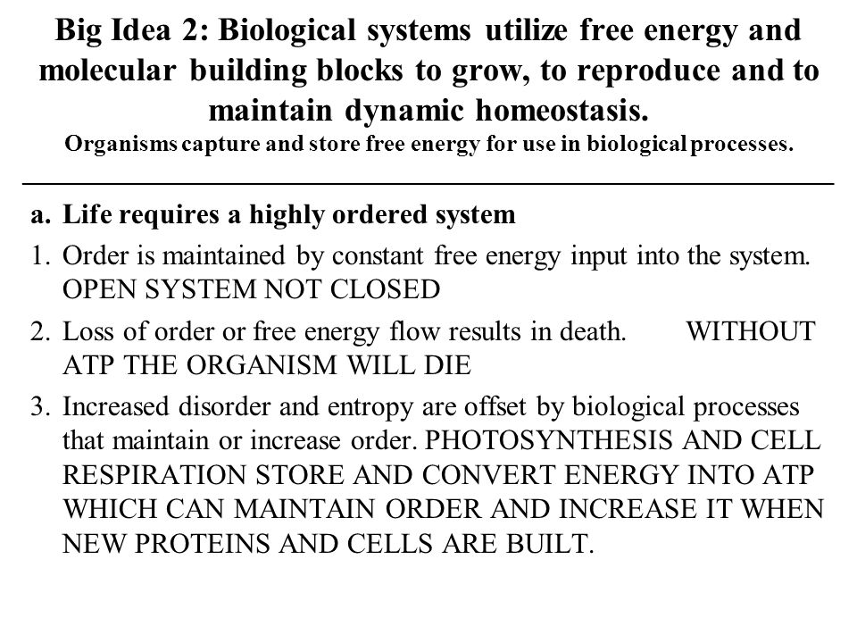Big Idea 2: Biological systems utilize free energy and molecular building blocks to grow, to reproduce and to maintain dynamic homeostasis. Organisms capture and store free energy for use in biological processes. ____________________________________________________________________