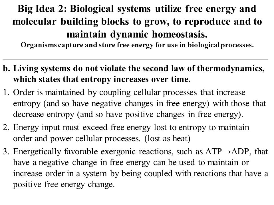 Big Idea 2: Biological systems utilize free energy and molecular building blocks to grow, to reproduce and to maintain dynamic homeostasis. Organisms capture and store free energy for use in biological processes.