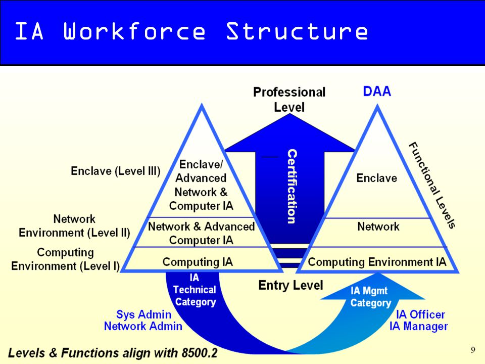 IA Workforce Structure