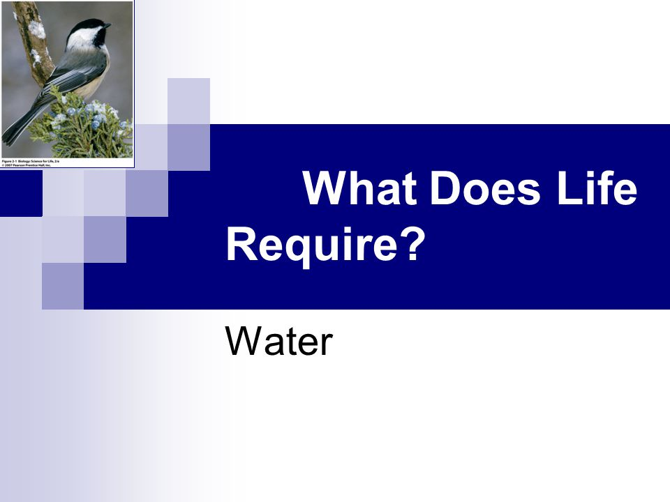 2.1 What Does Life Require Water
