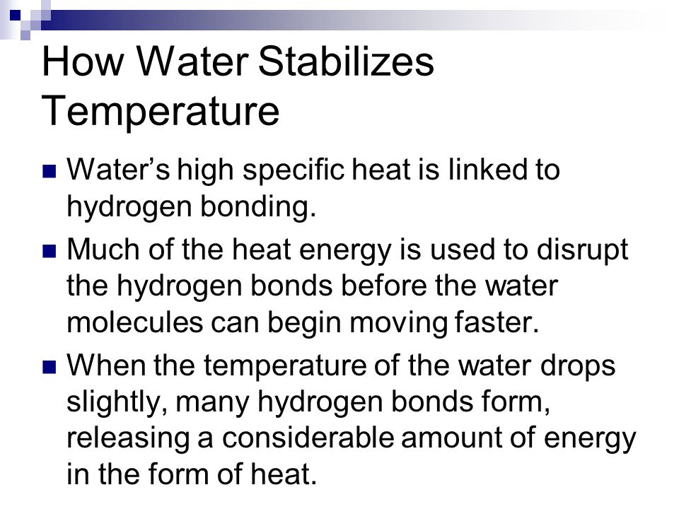 How Water Stabilizes Temperature