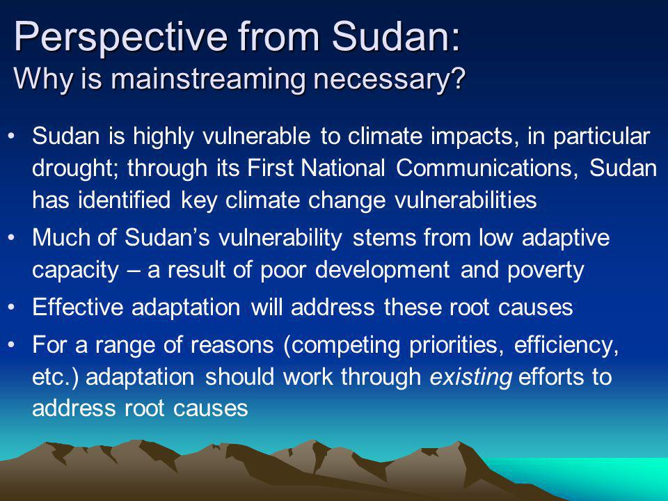 Perspective from Sudan: Why is mainstreaming necessary