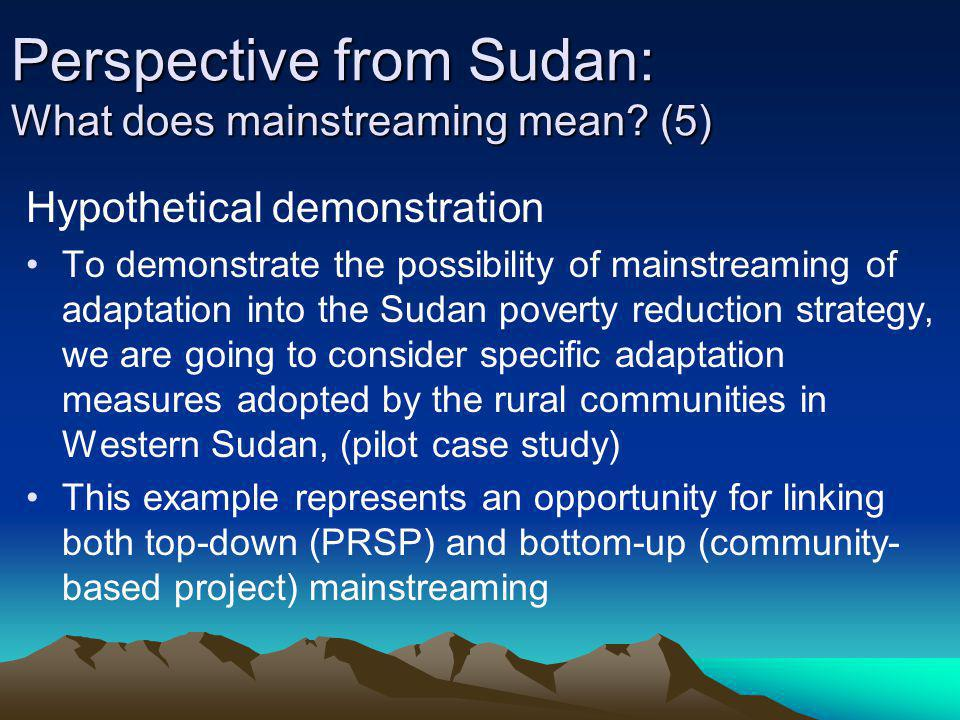 Perspective from Sudan: What does mainstreaming mean (5)