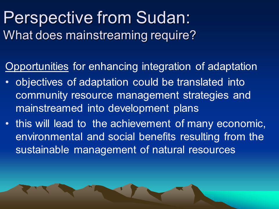 Perspective from Sudan: What does mainstreaming require