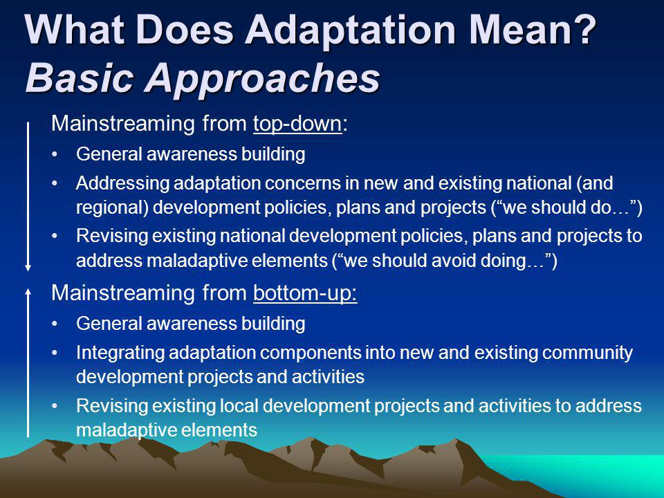 What Does Adaptation Mean Basic Approaches