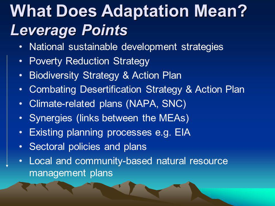 What Does Adaptation Mean Leverage Points