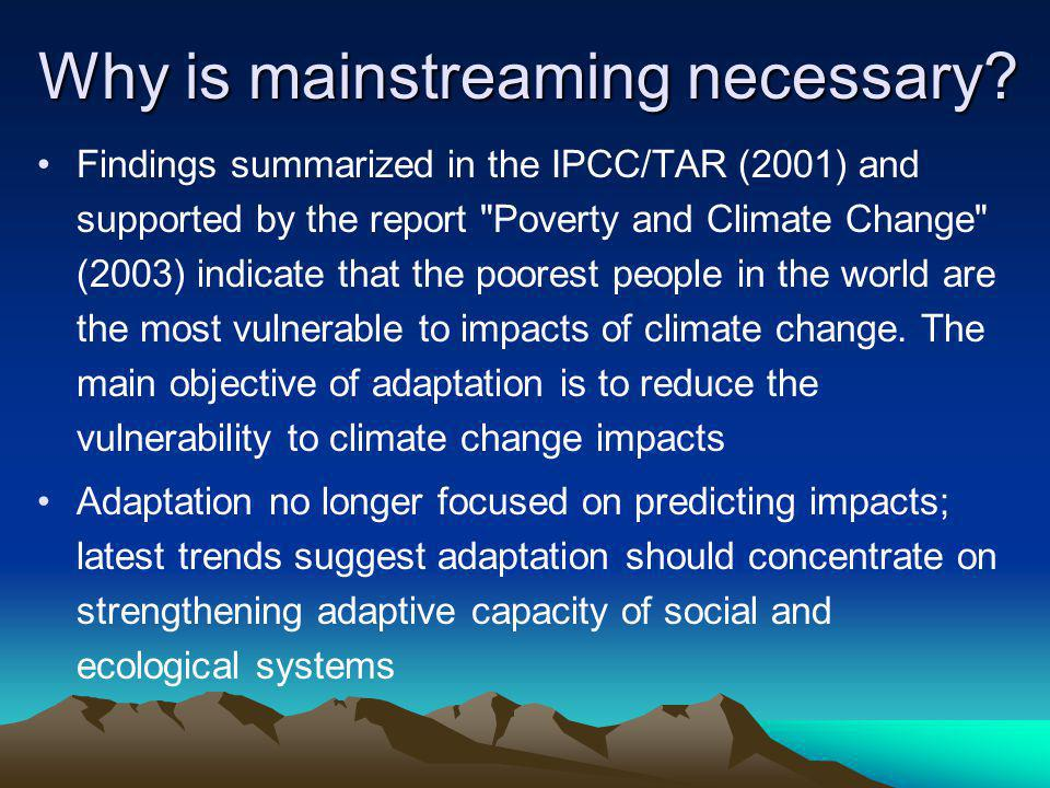 Why is mainstreaming necessary