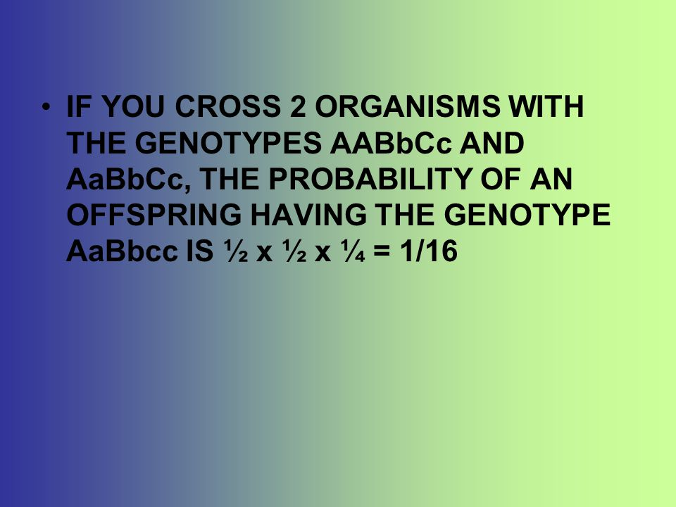 IF YOU CROSS 2 ORGANISMS WITH THE GENOTYPES AABbCc AND AaBbCc, THE PROBABILITY OF AN OFFSPRING HAVING THE GENOTYPE AaBbcc IS ½ x ½ x ¼ = 1/16