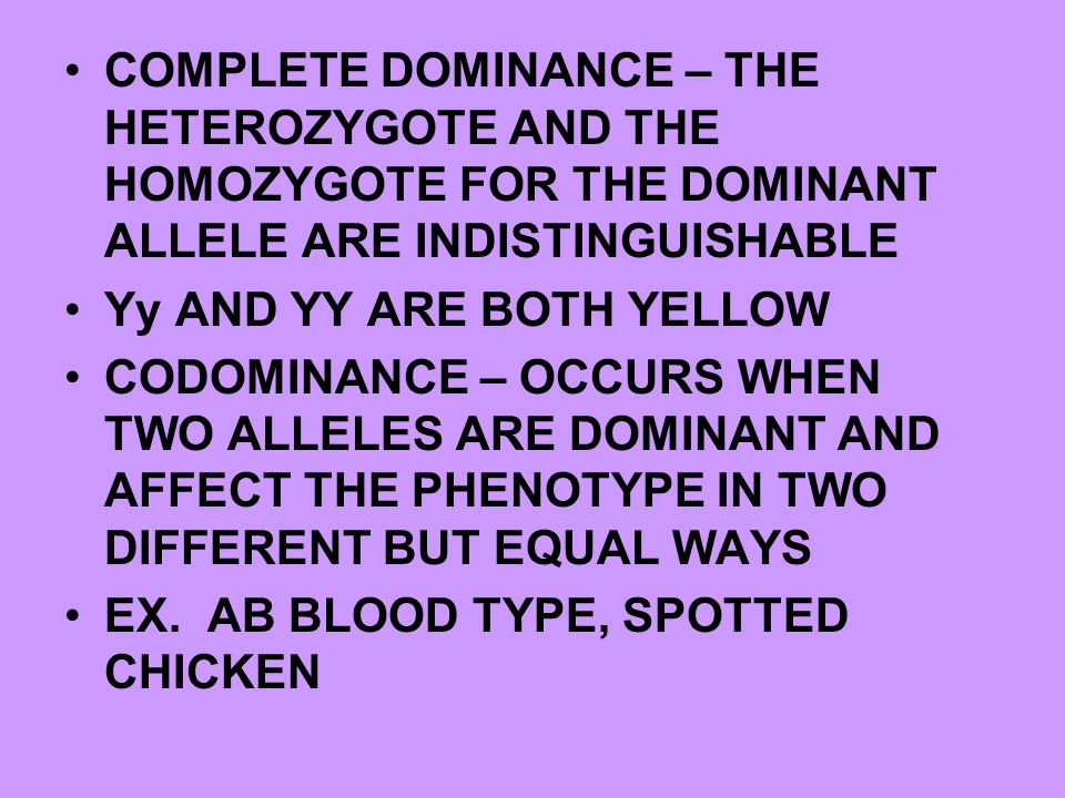 COMPLETE DOMINANCE – THE HETEROZYGOTE AND THE HOMOZYGOTE FOR THE DOMINANT ALLELE ARE INDISTINGUISHABLE