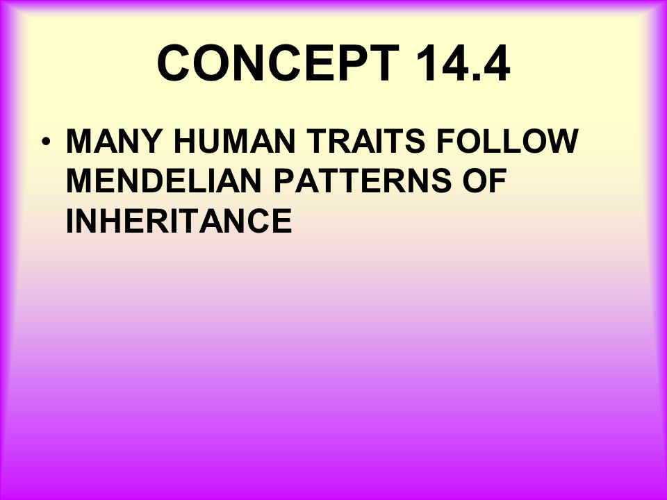 CONCEPT 14.4 MANY HUMAN TRAITS FOLLOW MENDELIAN PATTERNS OF INHERITANCE