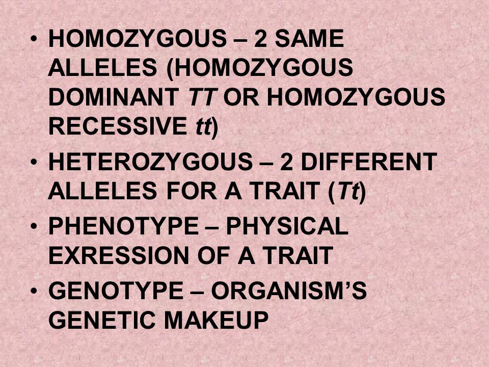 HOMOZYGOUS – 2 SAME ALLELES (HOMOZYGOUS DOMINANT TT OR HOMOZYGOUS RECESSIVE tt)