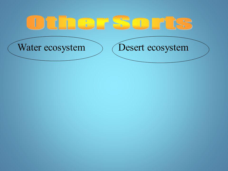 Other Sorts Water ecosystem Desert ecosystem