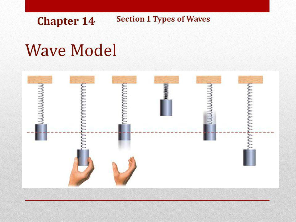 Chapter 14 Section 1 Types of Waves Wave Model