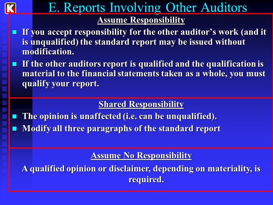 E. Reports Involving Other Auditors