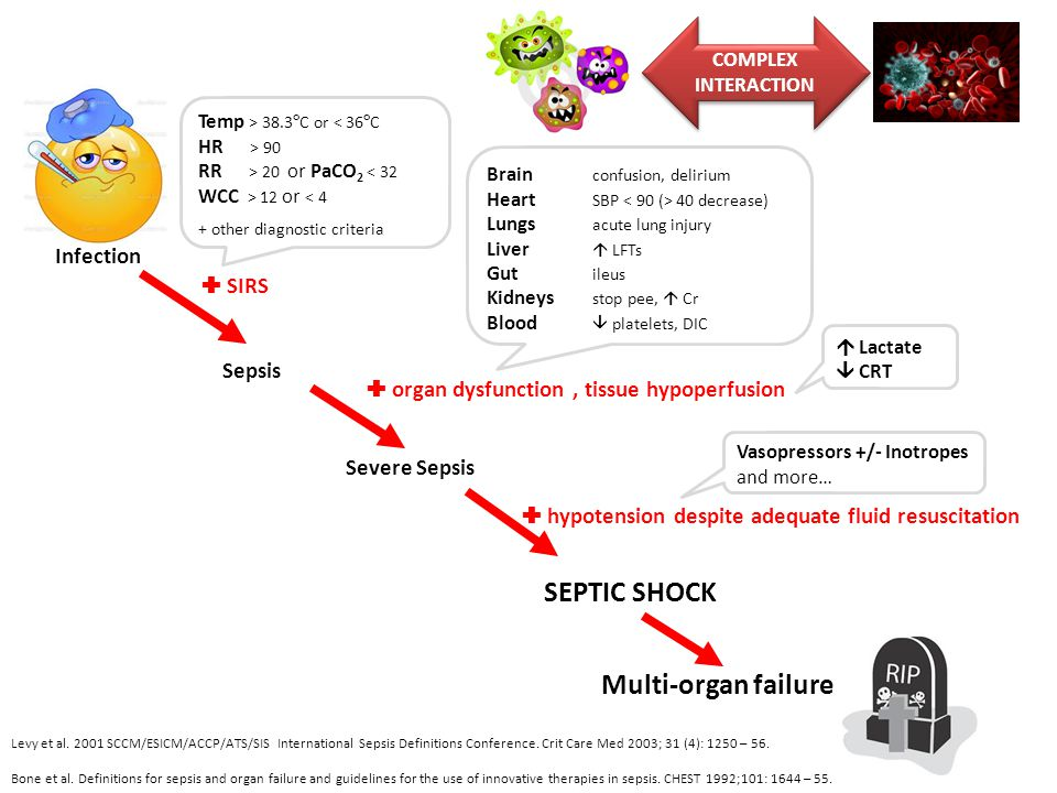 SEPTIC SHOCK Multi-organ failure Infection  SIRS Sepsis