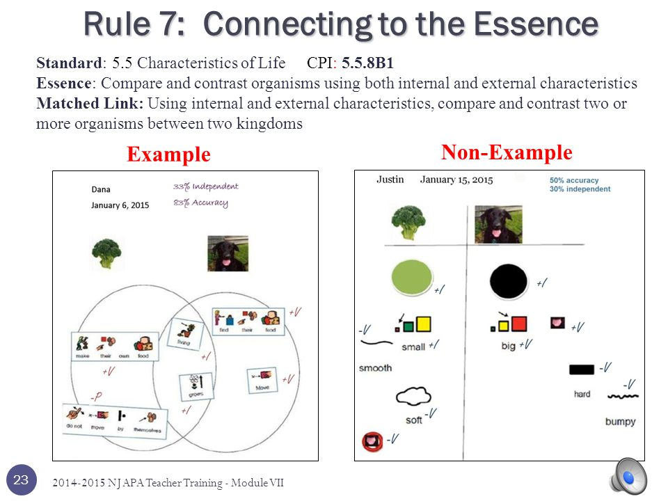 Rule 7: Connecting to the Essence