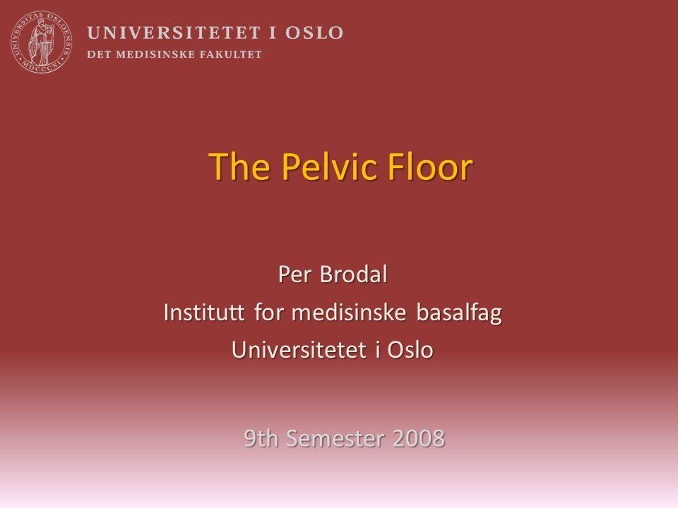 Institutt for medisinske basalfag