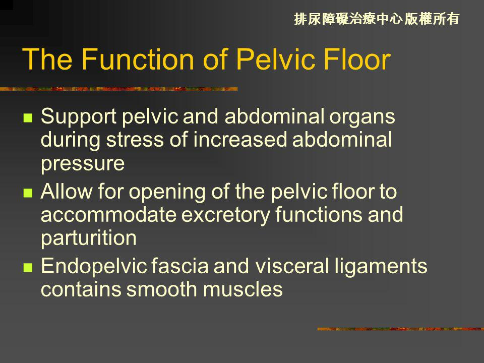The Function of Pelvic Floor