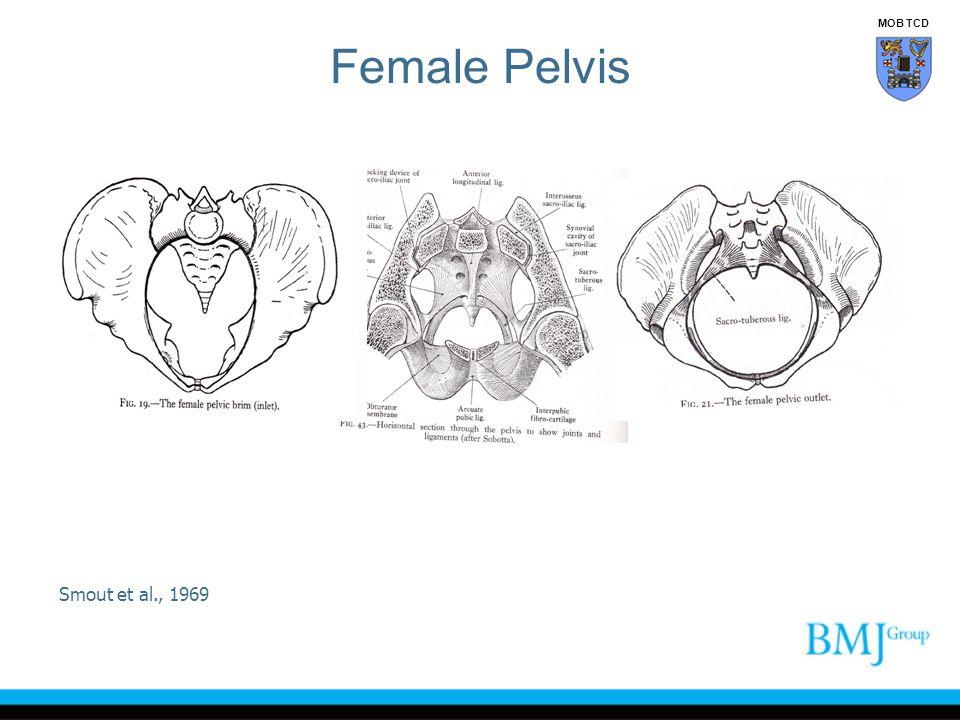 Female Pelvis MOB TCD Smout et al., 1969