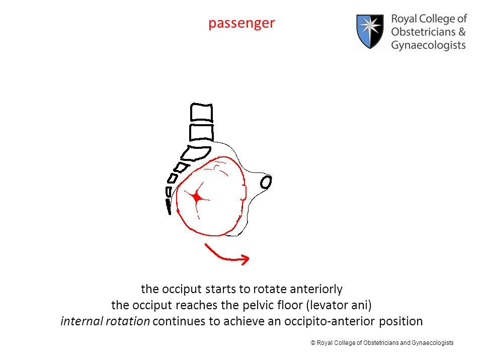 passenger the occiput starts to rotate anteriorly