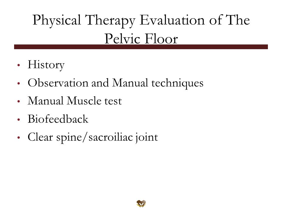 Physical Therapy Evaluation of The Pelvic Floor