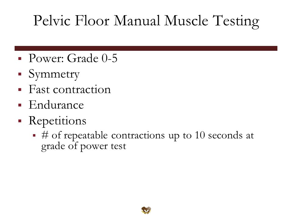 Pelvic Floor Manual Muscle Testing