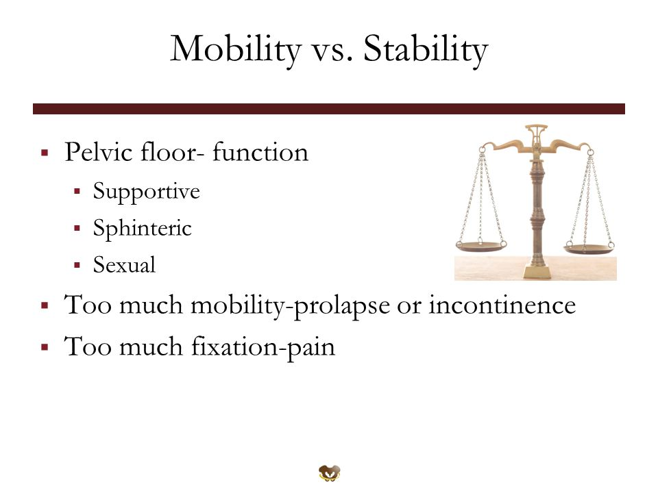 Mobility vs. Stability Pelvic floor- function