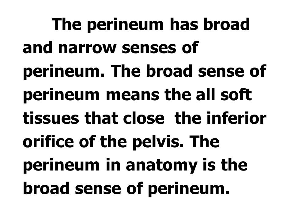 The perineum has broad and narrow senses of perineum