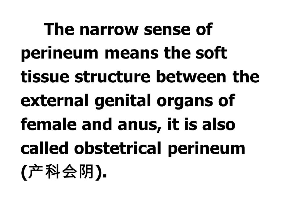 The narrow sense of perineum means the soft tissue structure between the external genital organs of female and anus, it is also called obstetrical perineum (产科会阴).