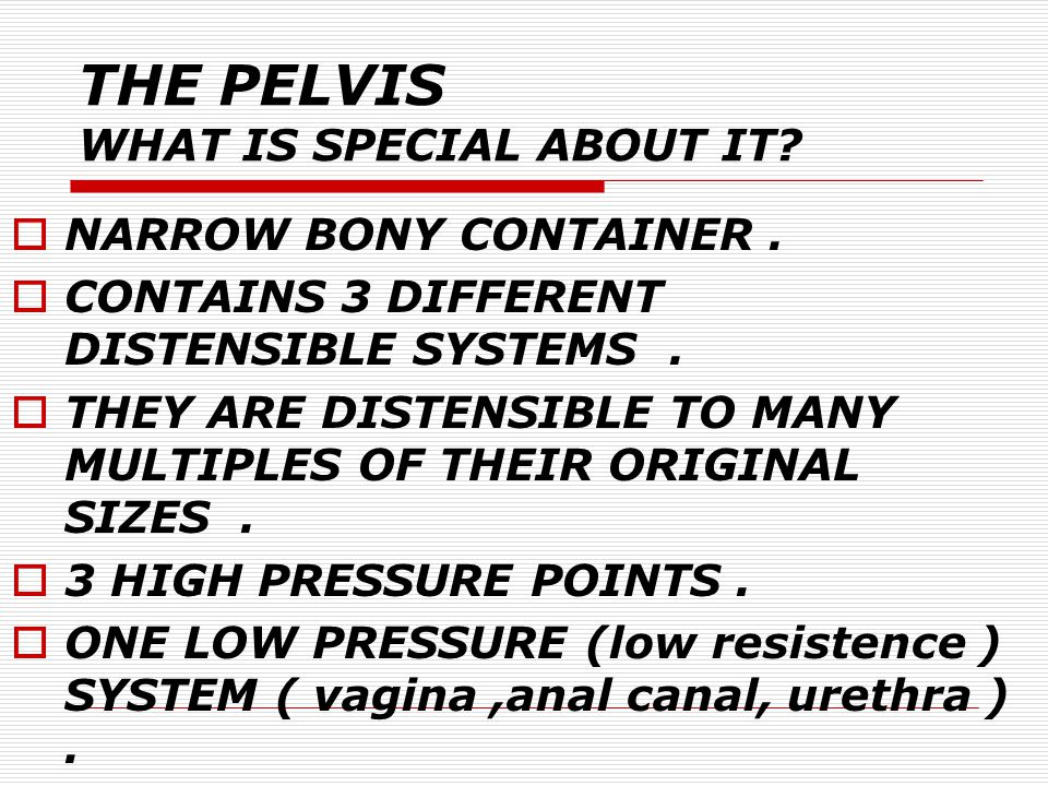 THE PELVIS WHAT IS SPECIAL ABOUT IT