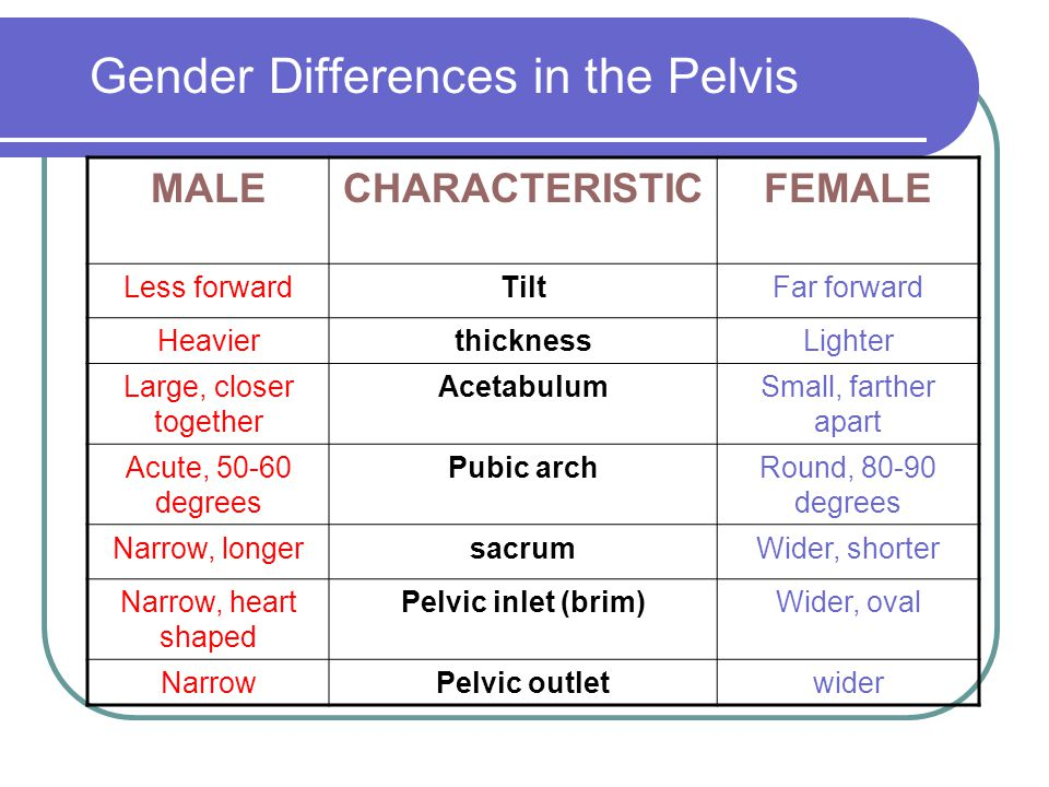 Gender Differences in the Pelvis