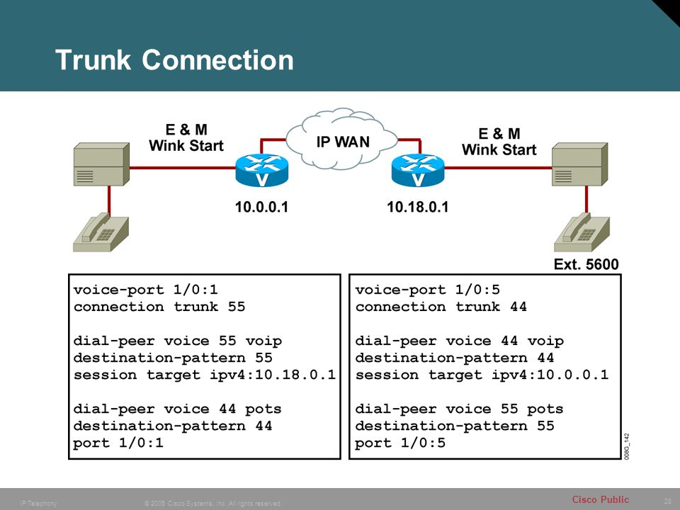 Trunk Connection