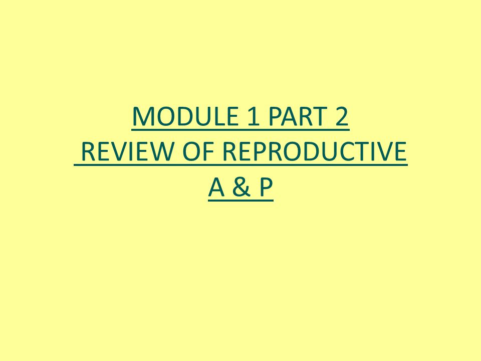 MODULE 1 PART 2 REVIEW OF REPRODUCTIVE A & P