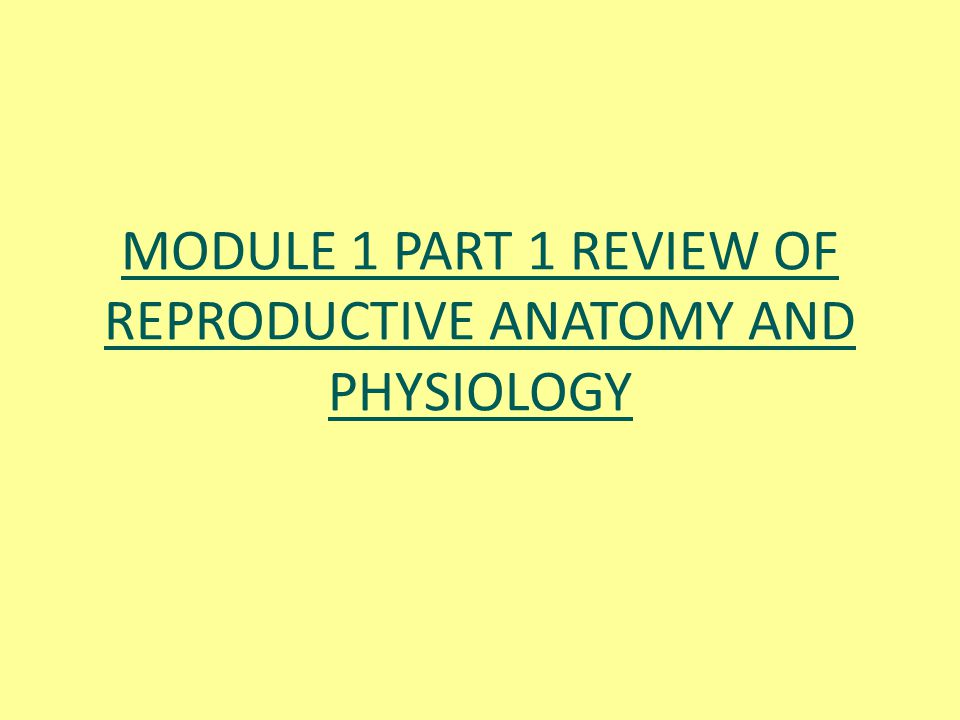 MODULE 1 PART 1 REVIEW OF REPRODUCTIVE ANATOMY AND PHYSIOLOGY