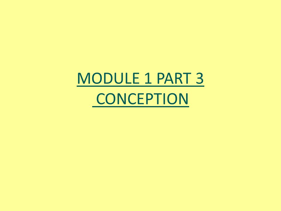 MODULE 1 PART 3 CONCEPTION