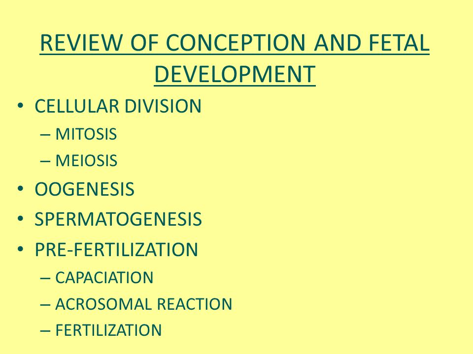 REVIEW OF CONCEPTION AND FETAL DEVELOPMENT