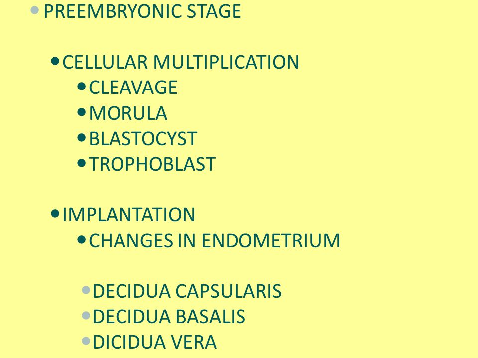 PREEMBRYONIC STAGE CELLULAR MULTIPLICATION. CLEAVAGE. MORULA. BLASTOCYST. TROPHOBLAST. IMPLANTATION.