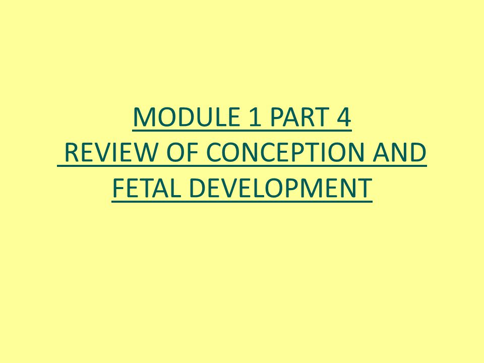 MODULE 1 PART 4 REVIEW OF CONCEPTION AND FETAL DEVELOPMENT