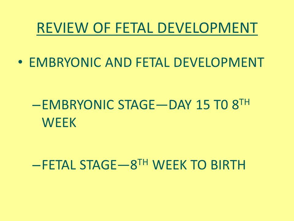 REVIEW OF FETAL DEVELOPMENT