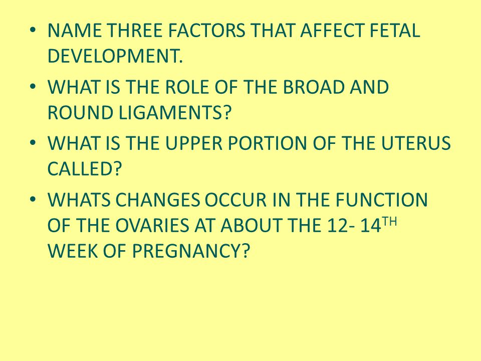 NAME THREE FACTORS THAT AFFECT FETAL DEVELOPMENT.