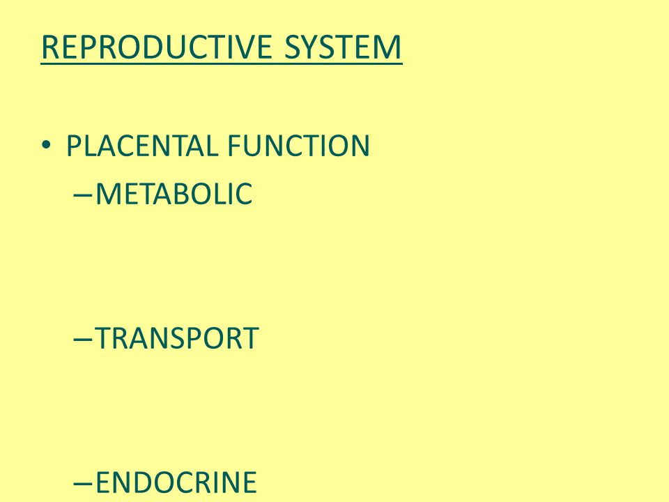 REPRODUCTIVE SYSTEM PLACENTAL FUNCTION METABOLIC TRANSPORT ENDOCRINE