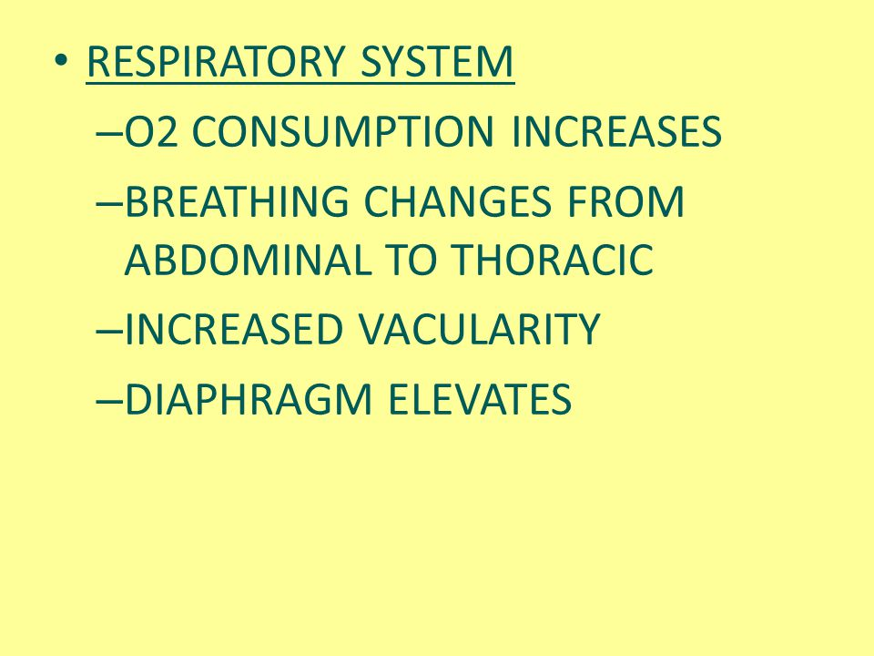 RESPIRATORY SYSTEM O2 CONSUMPTION INCREASES. BREATHING CHANGES FROM ABDOMINAL TO THORACIC. INCREASED VACULARITY.