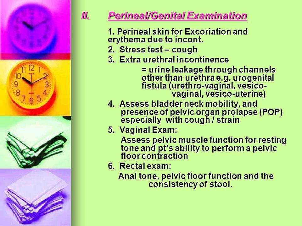 II. Perineal/Genital Examination