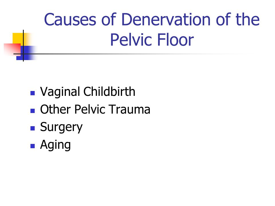 Causes of Denervation of the Pelvic Floor