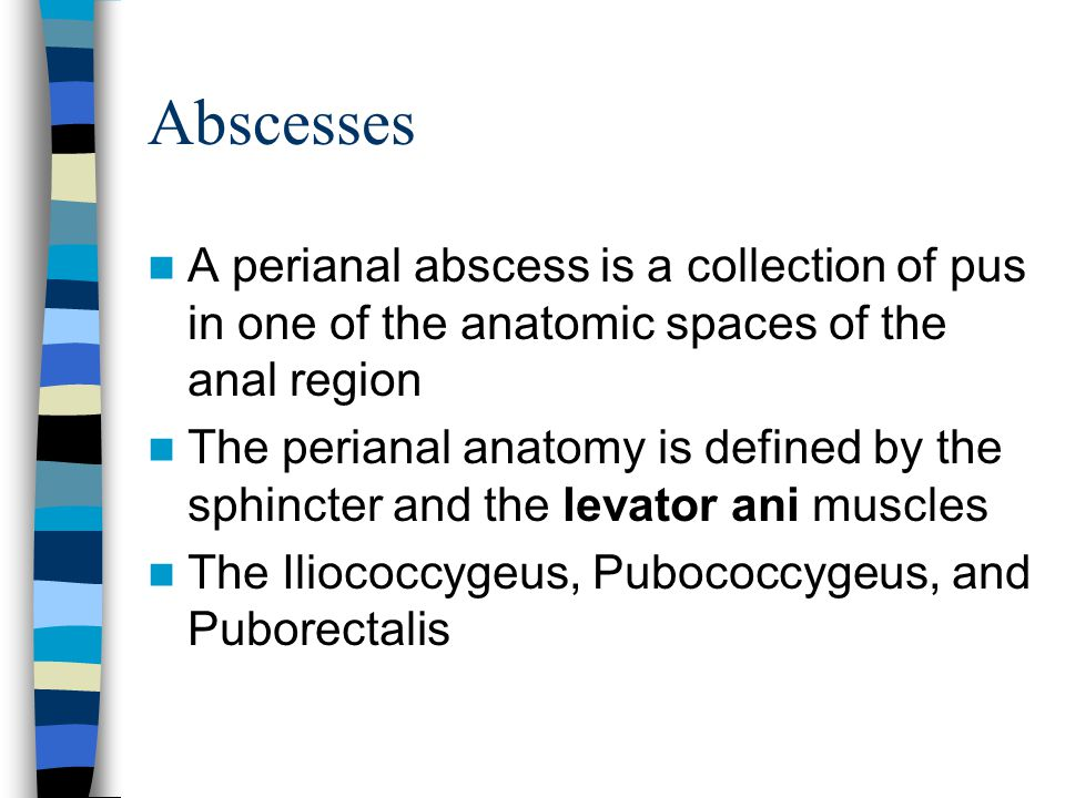 Abscesses A perianal abscess is a collection of pus in one of the anatomic spaces of the anal region.