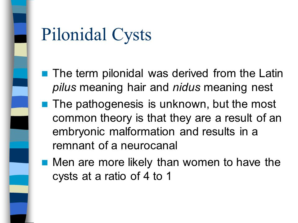 Pilonidal Cysts The term pilonidal was derived from the Latin pilus meaning hair and nidus meaning nest.