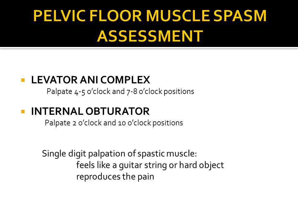 PELVIC FLOOR MUSCLE SPASM ASSESSMENT