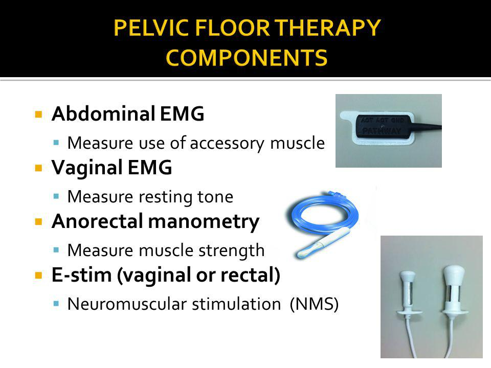 Pelvic Floor Therapy Components