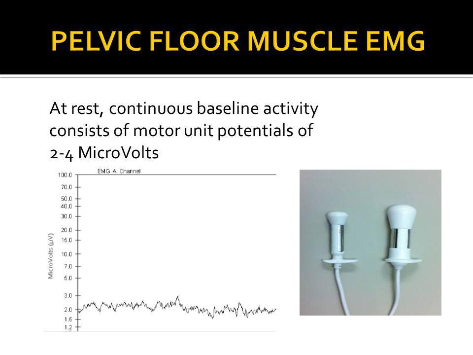 Pelvic Floor Muscle EMG