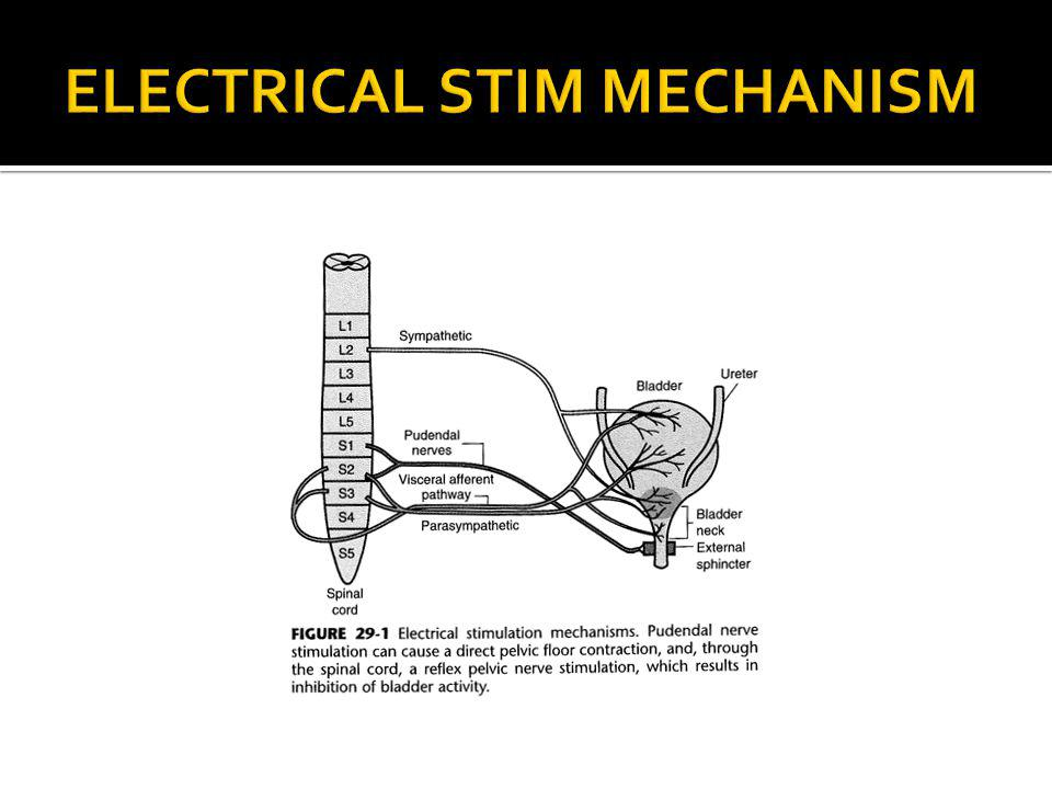 ELECTRICAL STIM MECHANISM